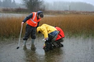 Did we mention it rained a bit during the surveys. Kudos to these volunteers!